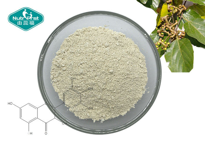 Vine Tea Extract Natural Botanical Extracts 98% Dihydromyricetin DHM For Liver Protection